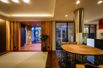 天然石の床と畳と木の床が調和したLDK (CAT HOUSE (猫と暮らす家))