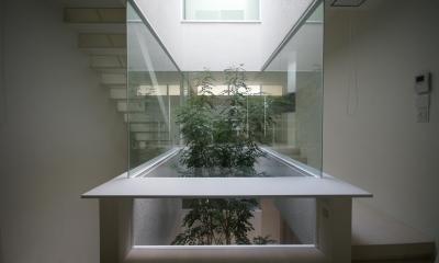 緑を感じる空間|HT-HOUSE