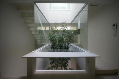 HT-HOUSE (緑を感じる空間)